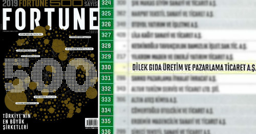 Fortune 500 Turkey...